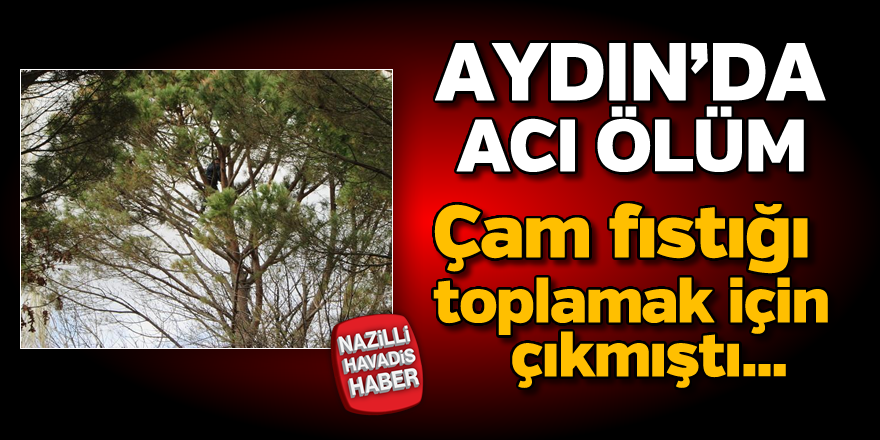 Aydın'da acı ölüm