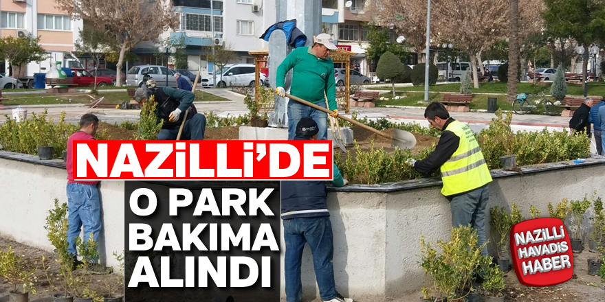 Nazilli'de o park bakıma alındı
