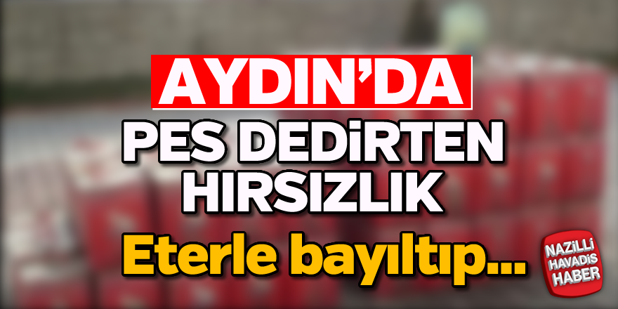 Aydın'da 'pes dedirten' hırsızlık