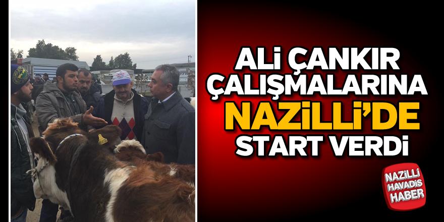 Ali Çankır, Nazilli'de sahaya indi