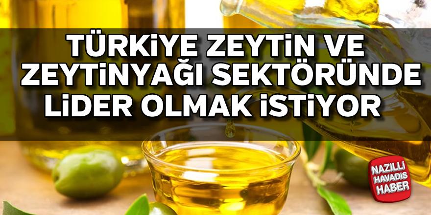 Türkiye zeytin ve zeytinyağı sektöründe lider olmak istiyor