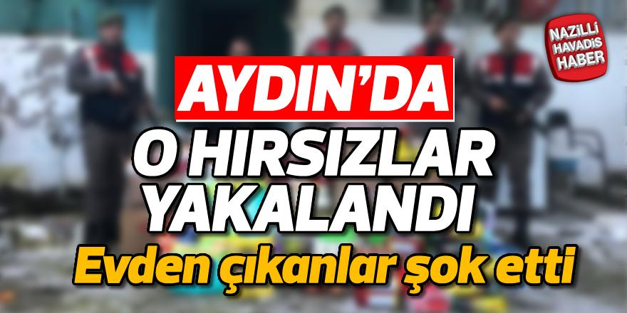 Aydın'da o hırsızlar yakalandı