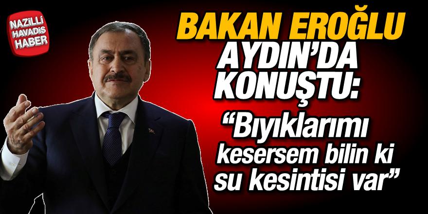 Bakan Eroğlu Aydın'da konuştu