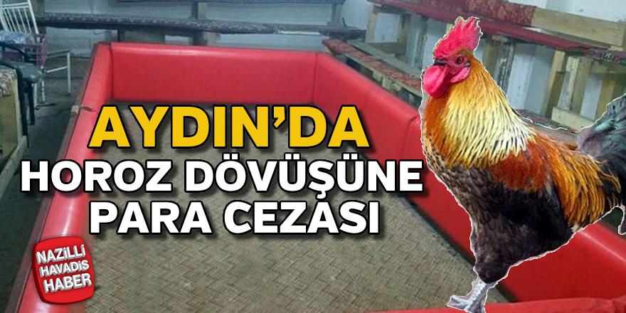 Aydın'da horoz dövüşüne para cezası