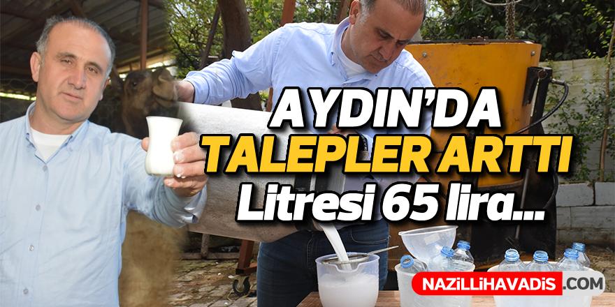 Aydın'da talepler arttı