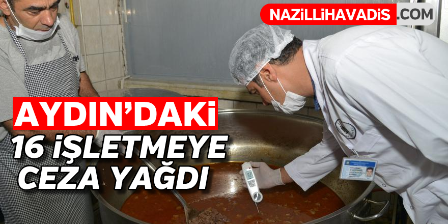 Aydın'daki 16 firmaya ceza yağdı