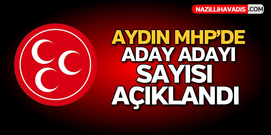 Aydın MHP'de aday adayı sayısı açıklandı
