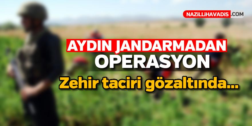 Aydın'da zehir operasyonu