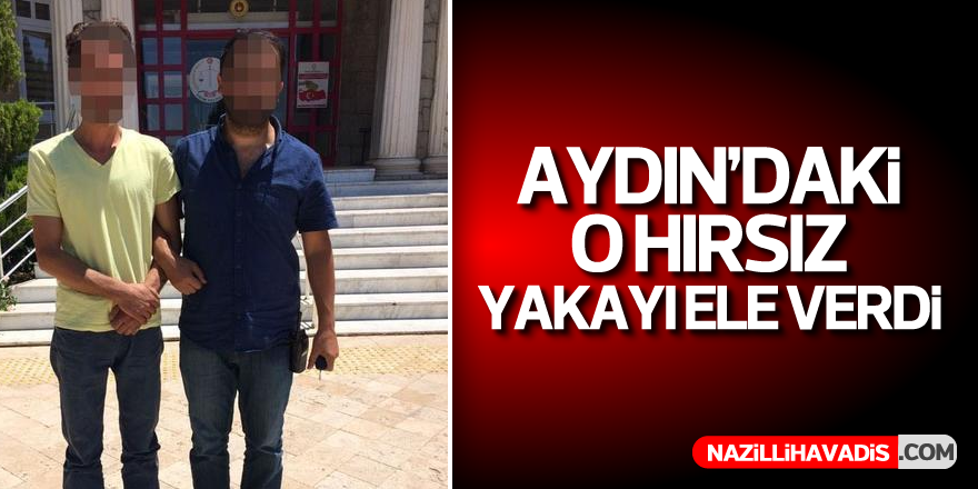Aydın'daki o hırsız yakayı ele verdi