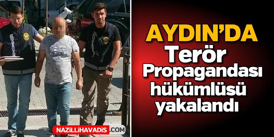 Aydın'da terör propagandası hükümlüsü yakalandı