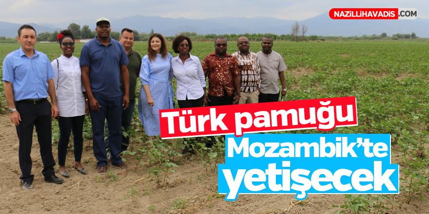 Türk pamuğu Mozambik'te yetişecek