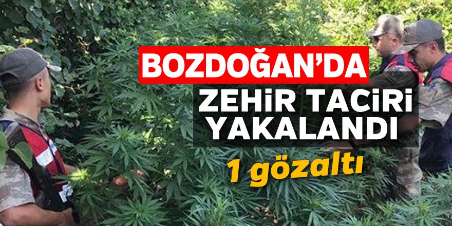 Bozdoğan'da zehir taciri gözaltına alındı