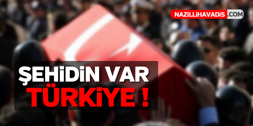 Şehidin var Türkiye !
