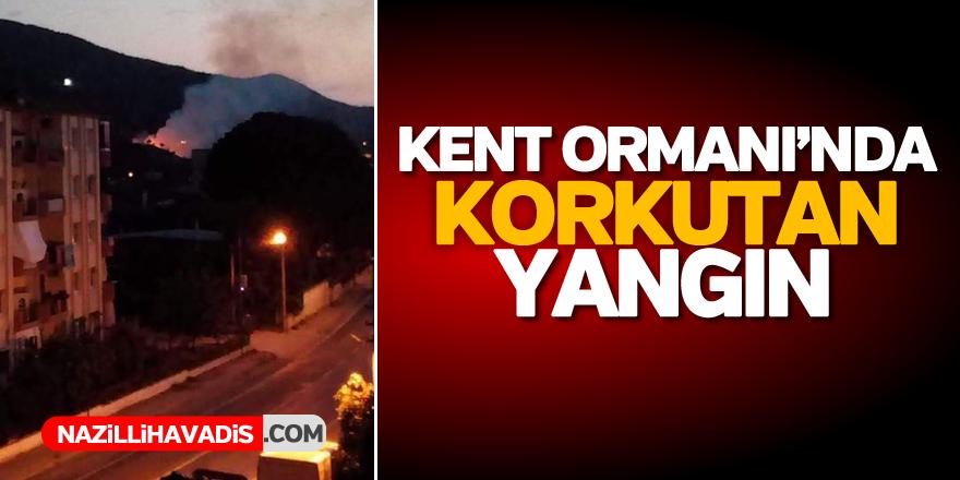Kent Ormanı'nda korkutan yangın