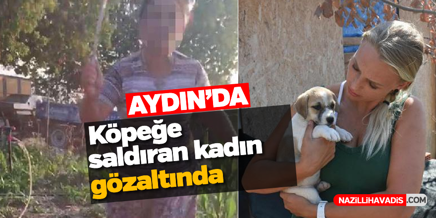 Aydın'da köpeğe saldıran kadın hakkında flaş gelişme