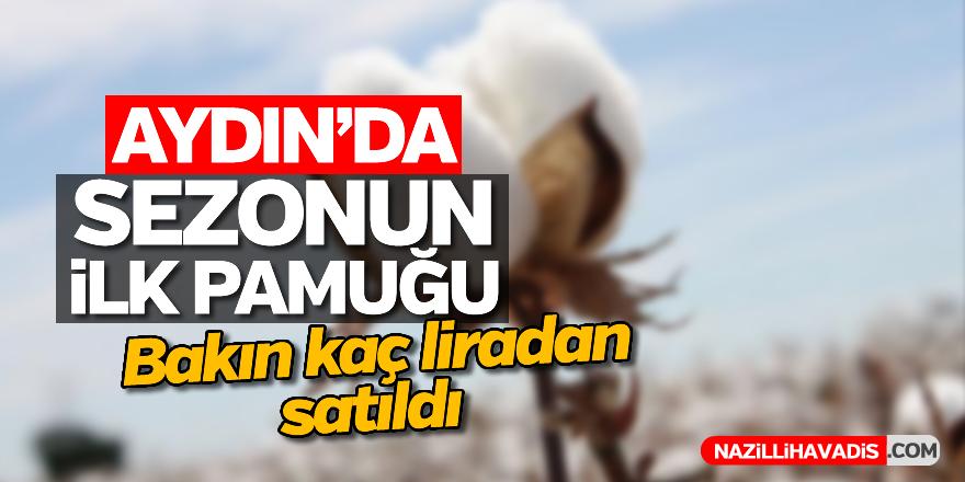 Aydın'da sezonun ilk pamuğu bakın kaç liradan satıldı