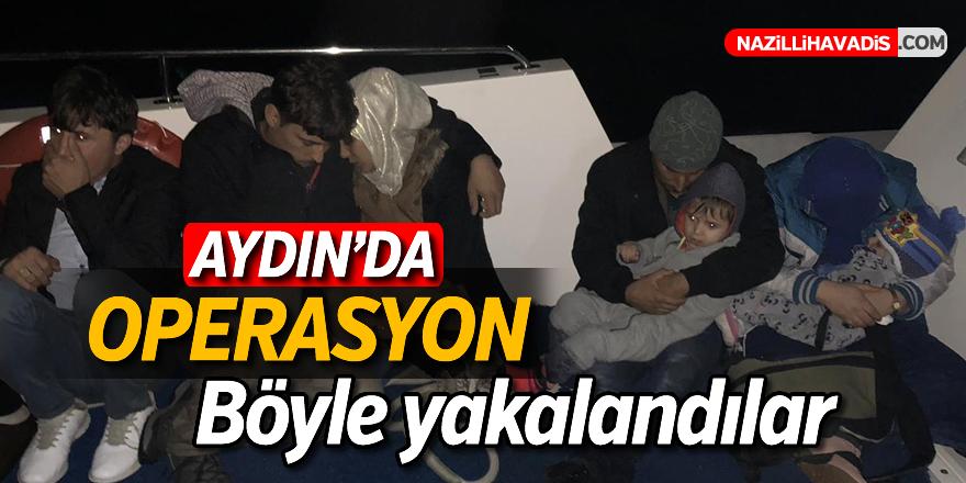 Aydın'da 24 düzensiz göçmen yakalandı