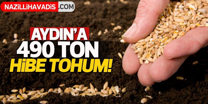 Aydın'a 490 ton hibe tohum!