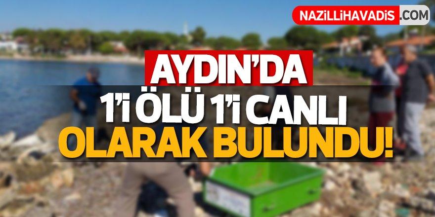 Aydın'da 1'i ölü 1'i canlı olarak bulundu!