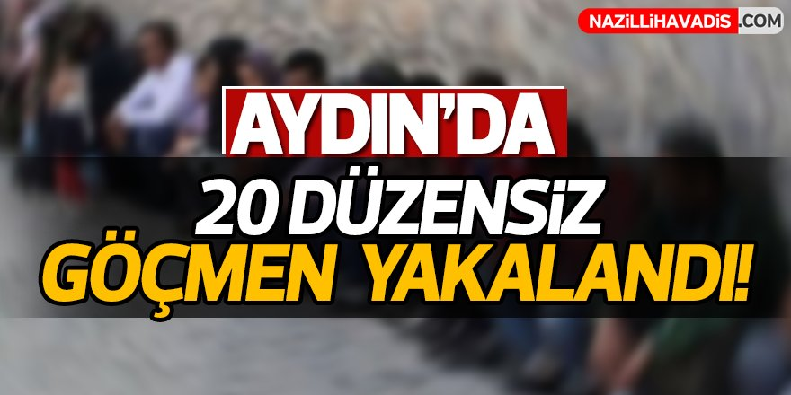 Aydın'da 20 düzensiz göçmen yakalandı