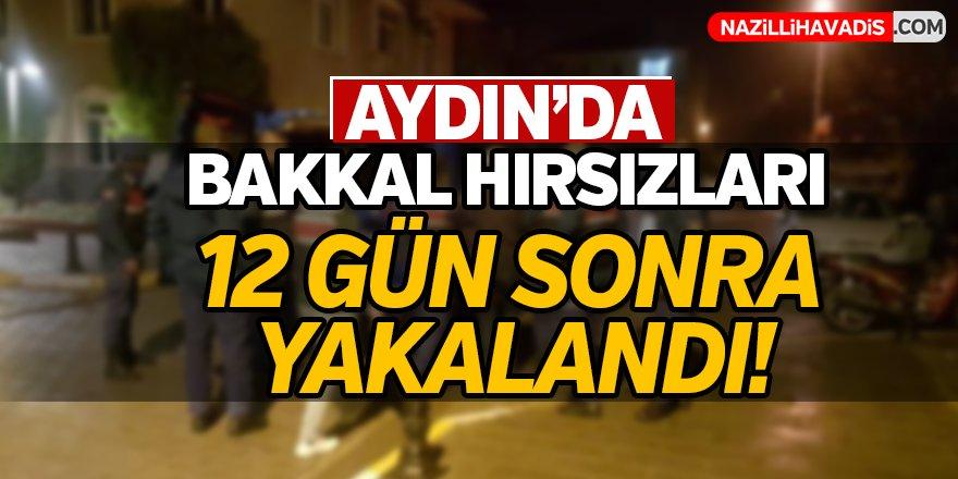 Aydın'da hırsızlar 12 gün sonra yakalandı!
