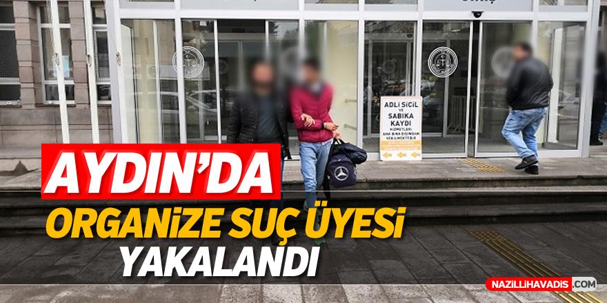 Aydın'da organize suç üyesi yakalandı