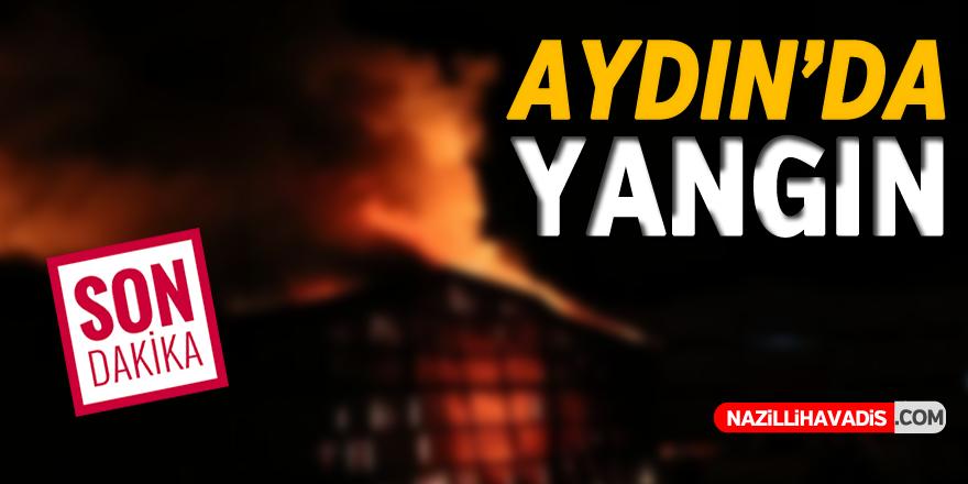 Aydın'da korkutan yangın !