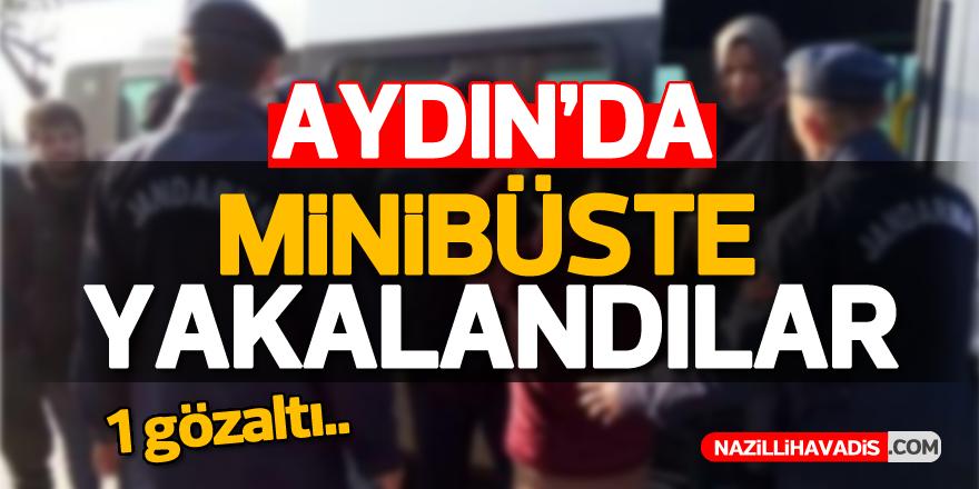Aydın'da minibüste yakalandılar...
