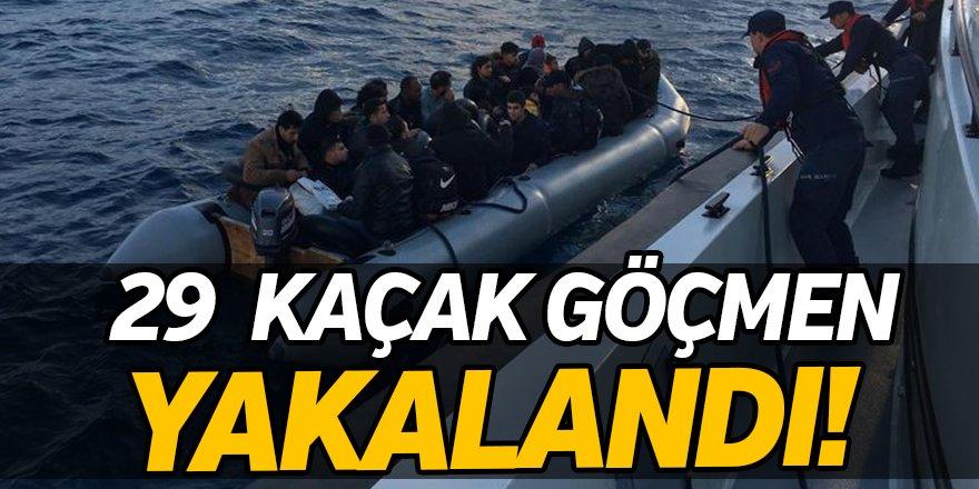 29 Kaçak Göçmen Yakalandı!