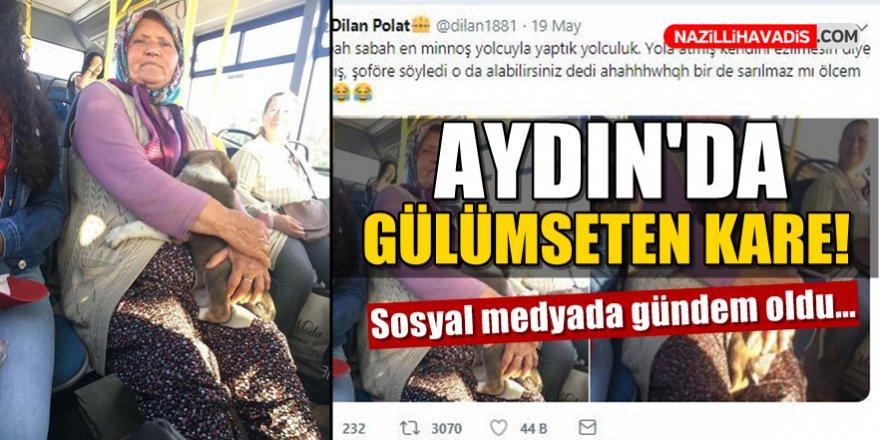 Aydın'da gülümseten kare! Sosyal medya gündemi oldu...