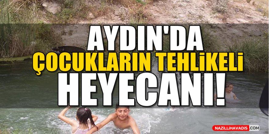 Aydın'da Çocukların Tehlikeli Heyecanı!