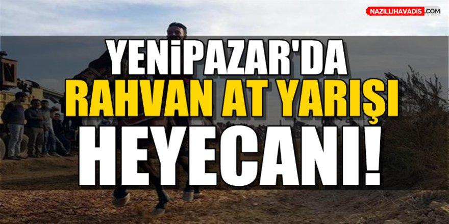 Yenipazar'da Rahvan At yarışları heyecanı!