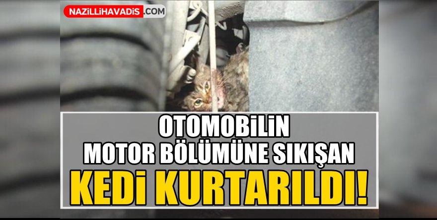 Otomobilin motor bölümüne sıkışan kedi kurtarıldı!