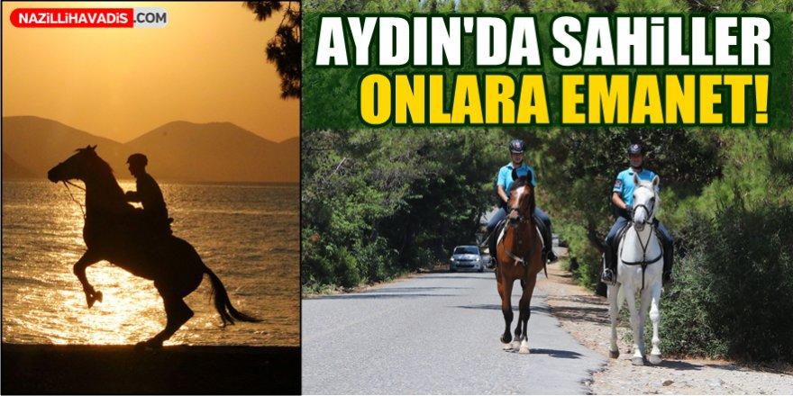 Aydın'da Sahiller Onlara Emanet!