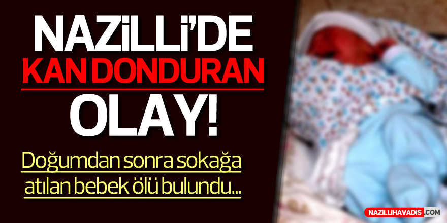 NAZİLLİ'DE KAN DONDURAN OLAY!