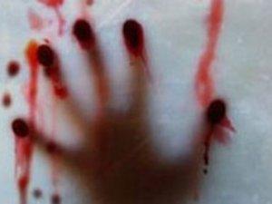 Türkiye'de Öldürülen Kadın Sayısı