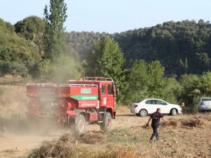 Germencik'te 4 hektar alan kül oldu