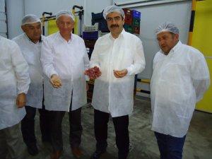 AK Parti'li Erdem, Dondurulmuş Gıda Tesisi'ni Ziyaret Etti