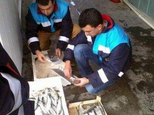 Aydın'da balık satış yerlerine eş zamanlı denetim yapıldı