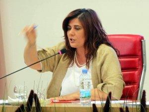 'İncir Ağacı' tartışması Aydın'da meclisi gerdi!
