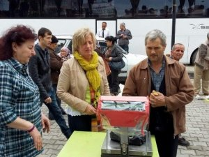 Turistlerden Germencik incir pazarına yoğun ilgi