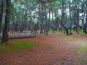 İzmir'e Devasa Piknik Alanı