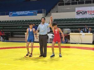 Sapancalı Sporcular Türkiye Güreş Şampiyonası'nda Başarılı Oldu