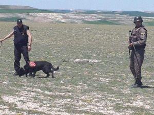 Yozgat Jandarmanın İz Takip Köpek Timi Babasını Öldüren Zanlıyı Yakaladı