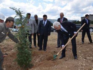 Başbakan Ahmet Davutoğlu Adına Hatıra Ormanı Oluşturuldu