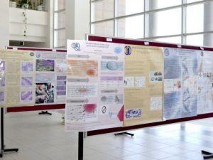 ESOGÜ'de Biyoloji Çözümlemeleri Etkinlik Sergisi Açıldı