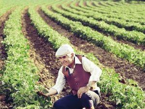 Turkcell'den Çiftçilere Hediye