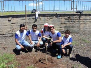 Cizre'de 'Haydi, Sende Bir Ağaç Dik, Geleceğe Hayat Ver' Etkinliği Düzenlendi