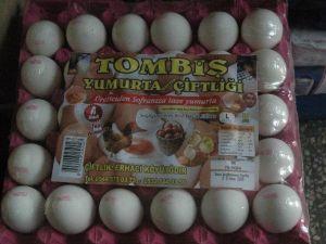 Süt Ürünleri Ve Yumurta'ya Ramazan Zammı