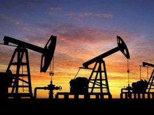 `Petrol 2020`de 80 dolara yükselecek`